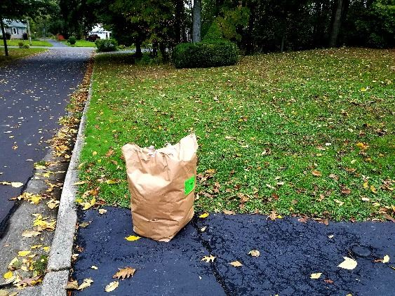 Yard Waste Bags ready for collection