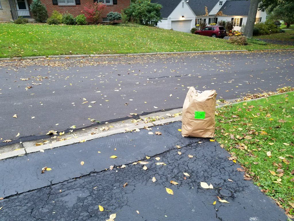 Yard Waste Bag Ready for Pick up